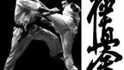 کیوکشین کاراته از کجا آمد؟