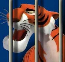 داستان کودکانه ی ببر گرفتار قفس