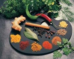 گیاهان دارویی مخصوص بیماری ها