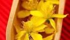 با مصرف گل راعی  دنیا را زیبا و رنگی ببینید