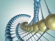 دانستنی  در مورد رشته مهندسی پلیمر