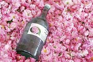 آیا گلاب خاصیت دارویی دارد؟