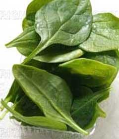 رفع کم خونی با این گیاه