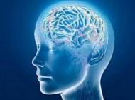 کند ذهنی از چه سنی آغاز می شود؟