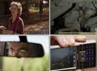 انواع حیوانات و چگونگی پیش بینی زلزله