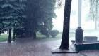 چرا باریدن باران همراه با بو است