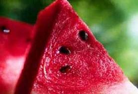 شناسایی غذاهای مفید و مضر