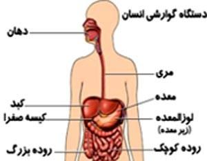 تکلیف بیماران گوارشی و کبدی در ماه رمضان