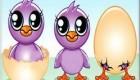 متولدین سال و پرنده متعلق با آنها