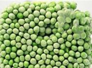 5 توصیه طلایی برای انجماد مواد غذایی