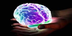 واکنش مغز در طی ارگاسم