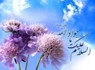 ولادت تولد امام محمد تقی (ع)