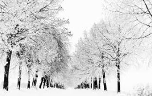 با مشکلات زمستانی چکار کنیم