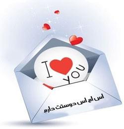 پیامک دوستت دارم (144)