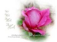 پیامک زیبای تبریک مبعث