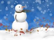 شعر زیبای برف