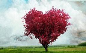 راز عشق در چیست؟