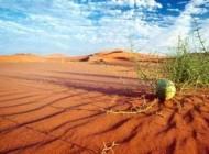 چونگی ایجاد فرسایش در خاک