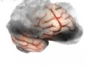 مغزتان را به کار بیندازید تا پیر نشود