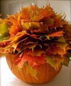 پاییز را به خانه بیاورید