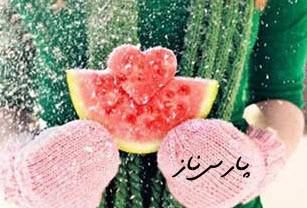 پیامک جدیدی و زیبای شب یلدا (15)