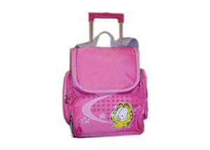 دانستنی های کیف مدرسه