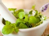 گیاهان دارویی زنانه