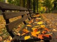 مواظب هوای پاییزی باشید