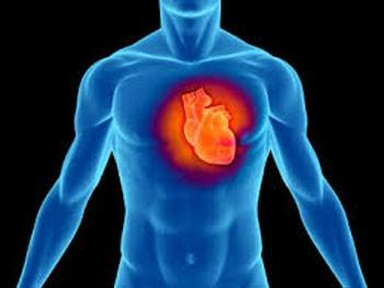 توصیه های پزشکی بیماری های قلبی و عروقی