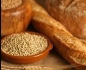 اهمیت غلات در برنامه غذایی