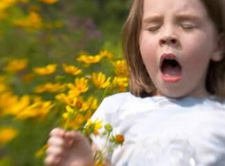 پژوهش های آلرژی فصلی کودکان