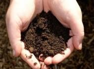 میزان عمر خاک باغچه
