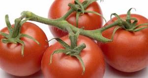 معجزه های گوجه فرنگی