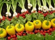 شستشوی سبزی ها و مراحل اصولی آن