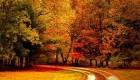 زیباترین پیامک های پاییز