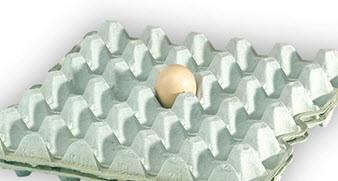 کارتن تخم مرغ را دور نیندازید !