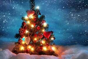شعر بسیار زیبا مخصوص کریسمس!!