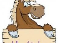 طالع بینی جالب متولدین سال اسب!!